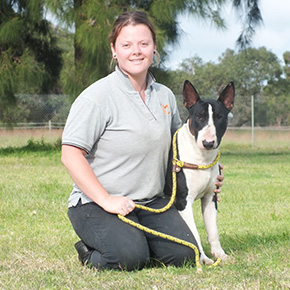 dog trainer perth Monique M