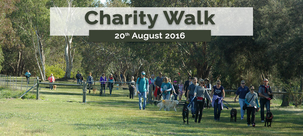 westcoast pet care charity walk poster 2016