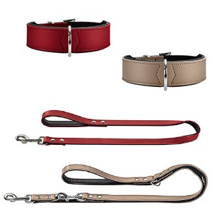 Artificial Leather Dog Collar & Lead Combo