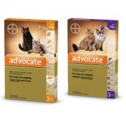 Advocate Cat Fleas, Heartworm and Worms Treatment