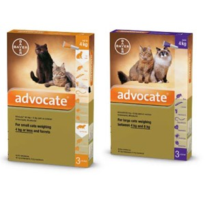 Advocate Cat Fleas, Heartworm, Worms Treatment
