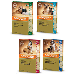 Advocate Dog Fleas, Heartworm, Worms Treatment