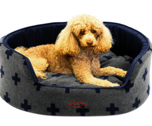Snooza Dog Buddy Bed