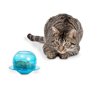 PetSafe Fishbowl Food Dispensing Cat Toy