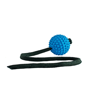 Aussie Dog Long Ball Toy