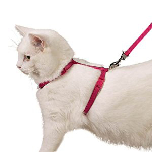 Cat and Kitten Body Harness with Leash