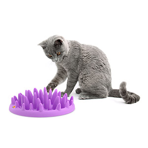 Northmate Catch Cat Slow Feeder Bowl