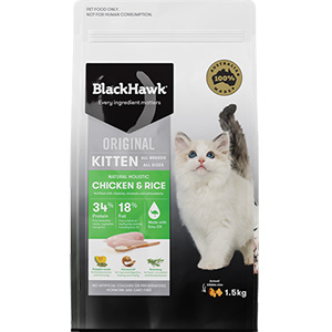 Black Hawk Kitten Food Chicken