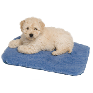 Stay Dry Pet Mat