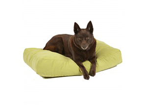 Snooza Shapes Pet Bed
