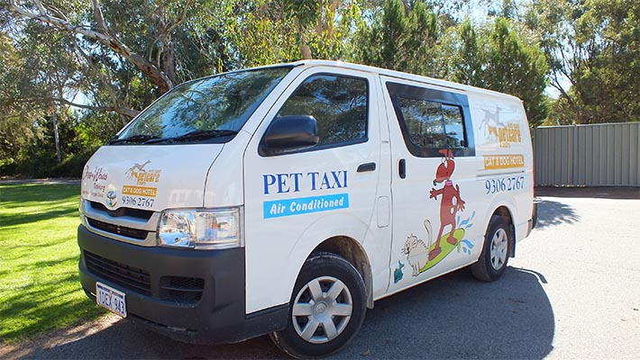 Perth Pet Boarding Transport - WCPC Pet Taxi
