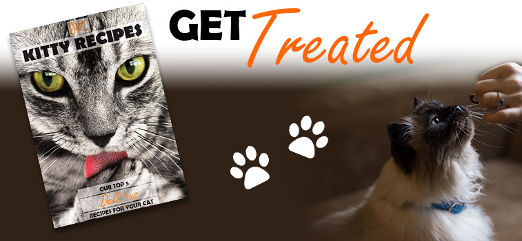 Cat Recipe Book - Get Treated