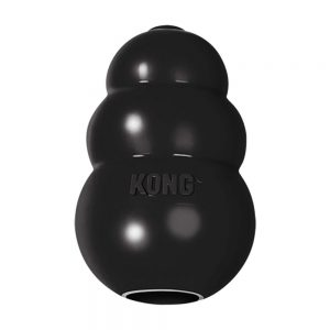 Kong Extreme Treat Dispensing Dog Toy